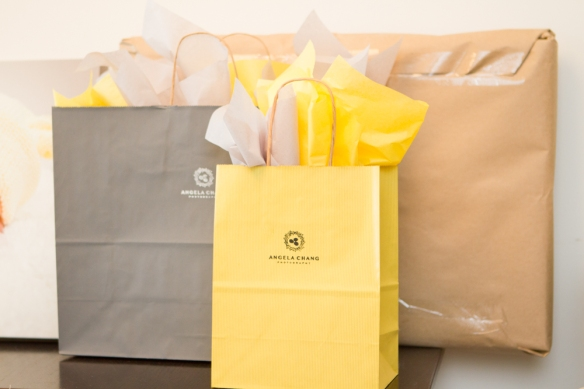 The yellow bag is for 8x10 and smaller prints.