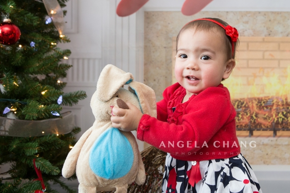 Angela Chang Photography holiday2