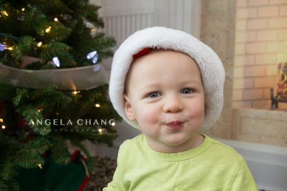 Angela Chang Photography holiday3