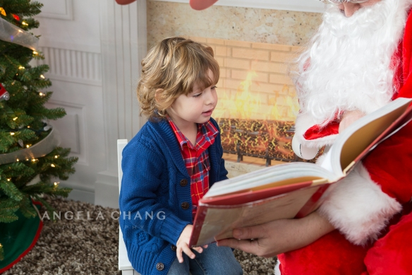 Angela Chang Photography holiday8