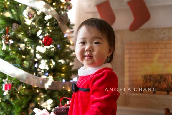 Angela Chang Photography mini2 copy