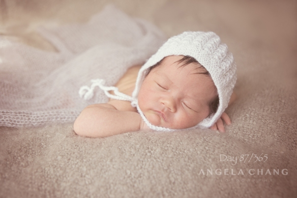 Day 87/365: I had the honor of shooting this beautiful baby's newborn session last week.  She just totally stole my heart.  I joked about taking her home with me, but her mom said no.