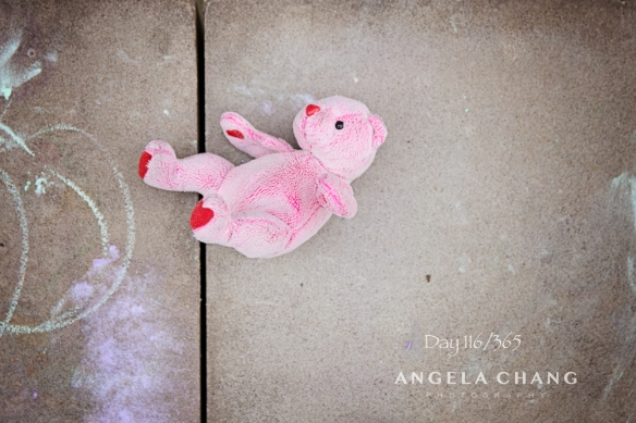 Angela Chang Photography Day 116 of 365