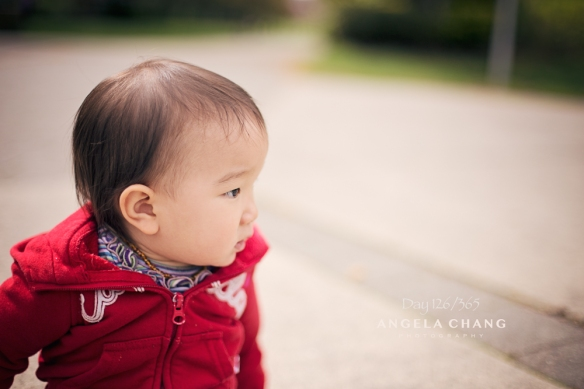 Angela Chang Photography Day 126 of 365