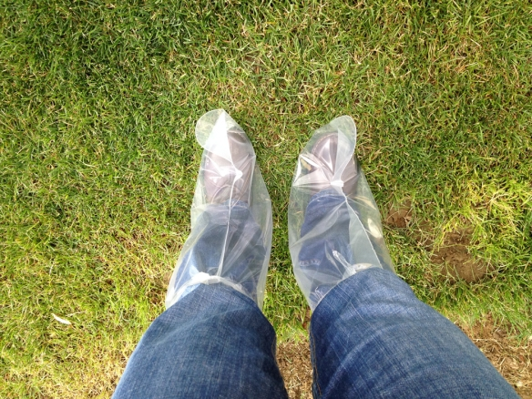 Wearing special booties so we don't transmit diseases between farms.