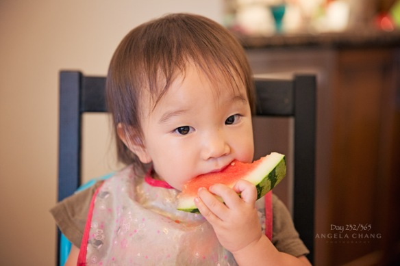 She has passed up on all her meals in favor of watermelon this week.