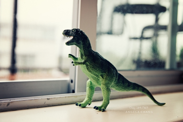 This is the newest member of our family. Initially I was reluctant to buy any dinosaurs for Josh because we already have a gazillion other things that hurt when you step on them. But now I'm a bit amused and thinking of silly things I can make this toy do for my photos.