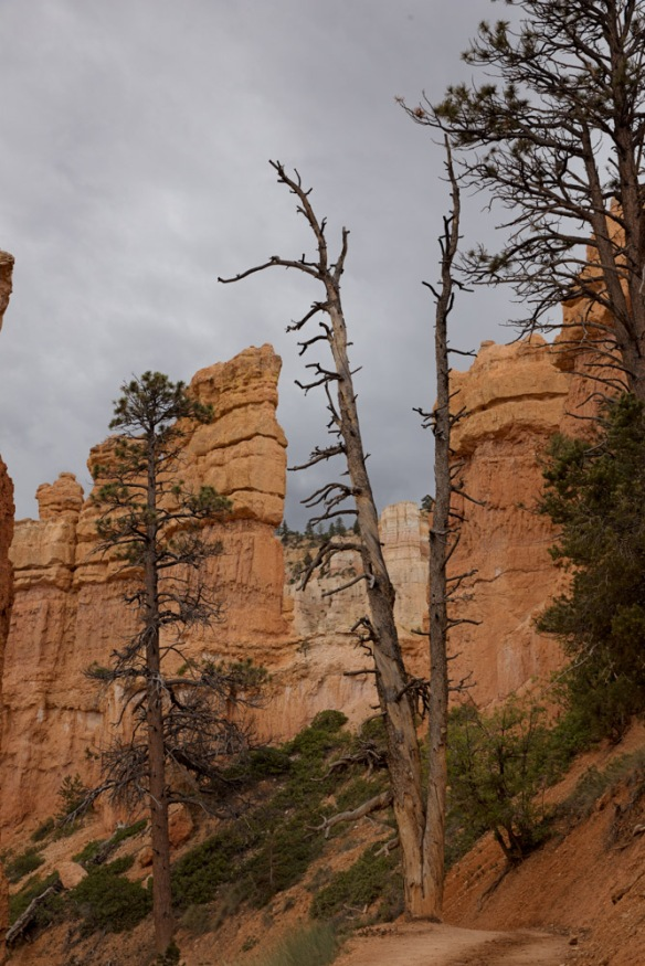 Day 2: Bryce National Park, storm approaching