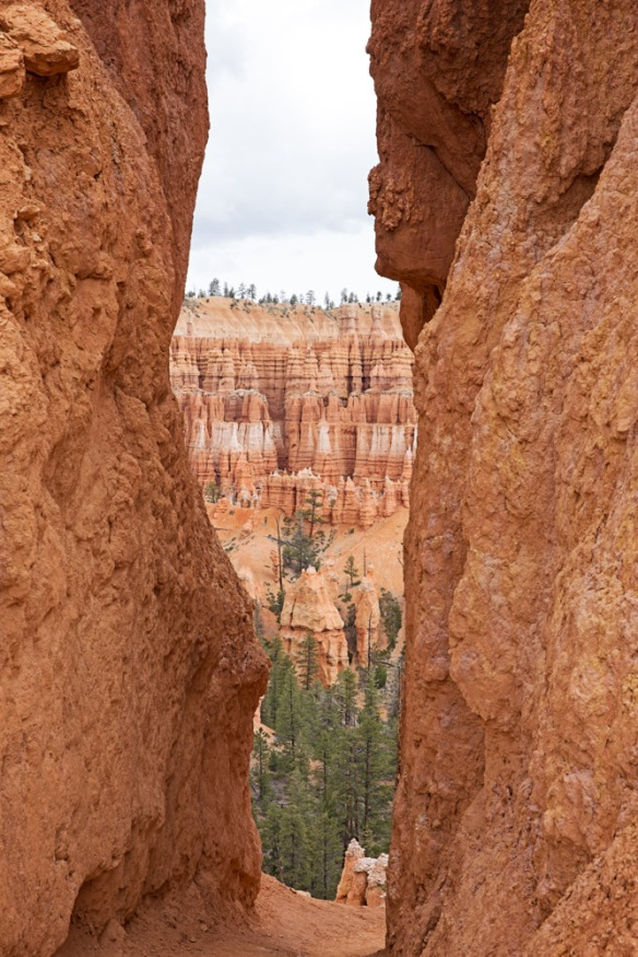 Day 2: Bryce National Park