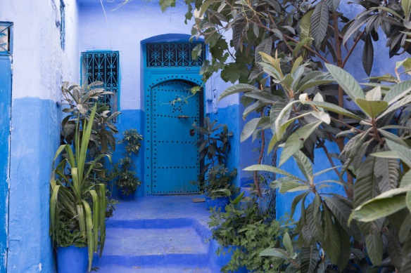 Angela Chang Photography Morocco travel Chefchaouen blue