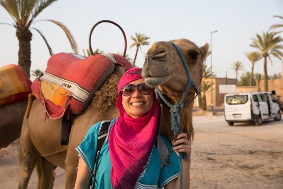 Camel ride morocco-1-7