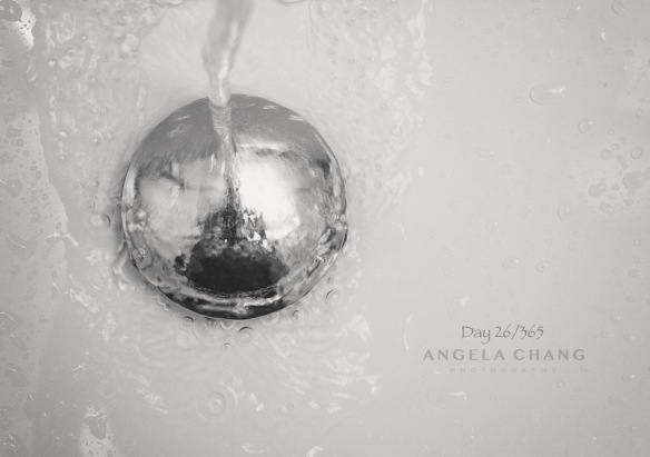 day-26-of-365-angela-chang-photography